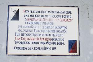 Azulejo Plaza Tientas