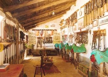 Detalles del guadarnés